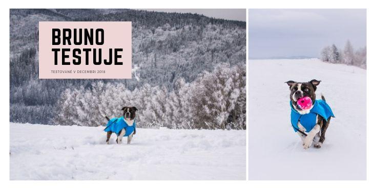 Ako obstála v teste zimná bunda pre psa Ruffwear Vert jacket™, inšpirovaná horskými vodcami a ich ps