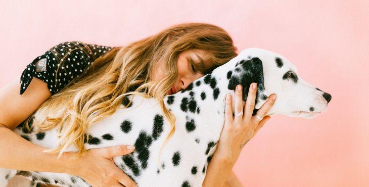 Aký pán, taký pes.  Silné puto medzi tebou a tvojim psom môže vážne ublížiť!
