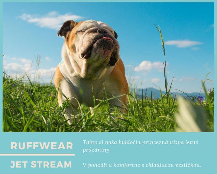 chladiaca vesta pre psa Ruffwear, leto so psom, Pes bruno, brunov obchodík, anglický buldog, úpal u psa, prehriatie u psa, turistika so psom