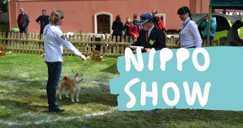 Počul si už o Nippo show?