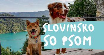 So psom do Slovinska - Ljubljana a Národný park Triglav