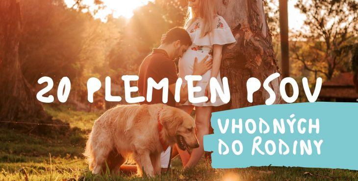 20 psov vhodných do rodiny. Aký pes je vhodný pre deti?