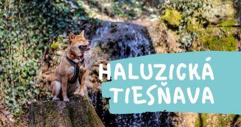 Tip na výlet so psom - Haluzická tiesňava