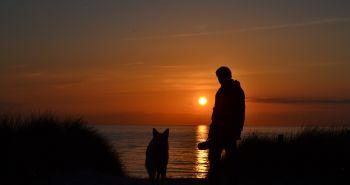 Neuveriteľné! Vedci získali nové dôkazy o tom, ako dlho už žijeme spoločne so psami!