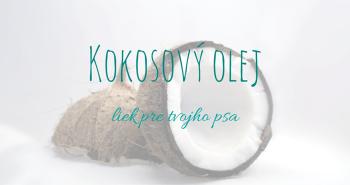 Kokosový olej – liek pre tvojho psa