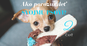 Ako porozumieť svojmu psovi? 2. časť - Čo je to odmena?