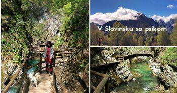 Brunovi kamoši cestujú: Slovinsko, na horách aj v kaňone.