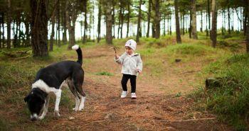Puto priateľstva medzi psom adieťaťom? Prečo nie! Druhá časť: Výchova psa.
