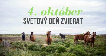Každý rok spolu oslavujeme 4.októbra Svetový deň zvierat