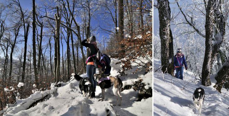 Tip na výlet so psom: Záruby vmalých Karpatoch
