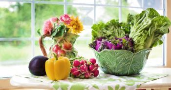 10 dôvodov prečo kŕmiť tvojho psa aj zeleninou
