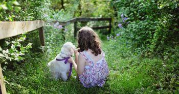 10 zelených pokladov v boji proti psím alergiám