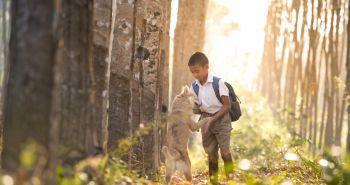 Je pes pre dieťa lepším spoločníkom ako jeho súrodenec?
