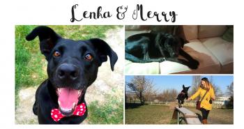 Príbehy so šťastným koncom: Lenka a Merry