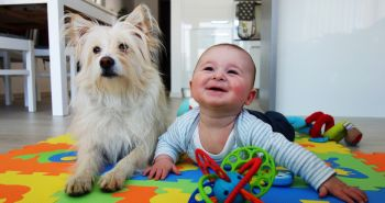 Odborníci odhalili, prečo sa prihovárame rovnako roztomilým hlasom deťom aj psom