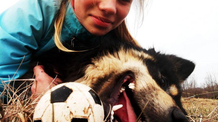 adopcia-utulko-pes