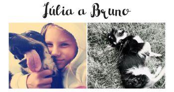 Bruno, láska na prvý pohľad