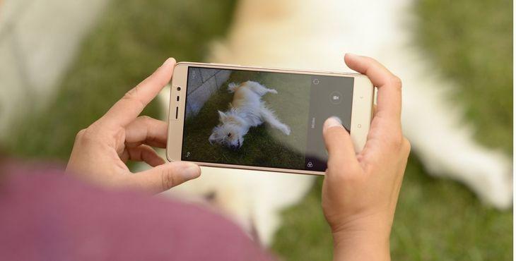 Zabudni na profesionálov, sprav svojmu psovi perfektnú fotku po svojom!