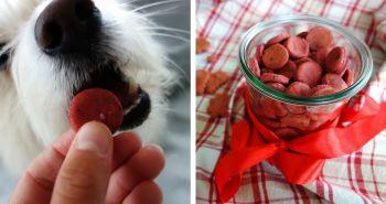 Ružové tréningové maškrty pre tvojho psa