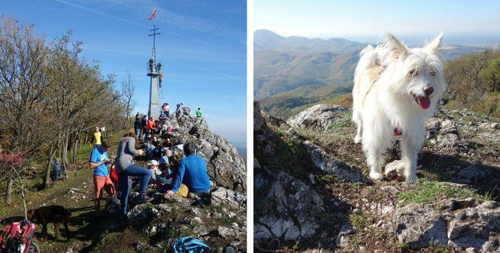 Tip na výlet so psom: Vrch Vápenná (Roštún)