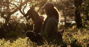 Prečo niektorí ľudia psov milujú a iní nenávidia?