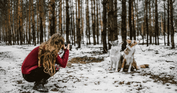 Ve Shandor a jej láska ku psom prekvitla k profesionálnemu fotografovaniu