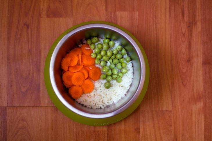 vegánska strava pre psov, pes vegetarian,