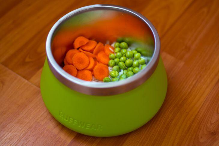 vegánska strava pre psov, pes vegán