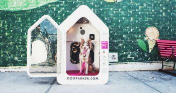 DOG PARKER - postarám sa ti o psa, kým ty nakupuješ