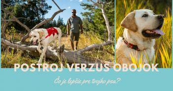 Postroj verzus obojok: Čo je lepšie pre tvojho psa?
