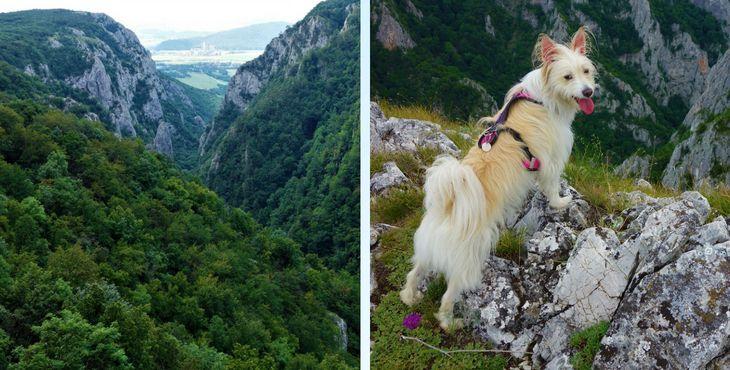 Tip na výlet so psom: Zádielská tiesňava