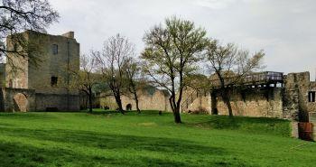 Tip na výlet so psom: Zrúcanina hradu Hainburg