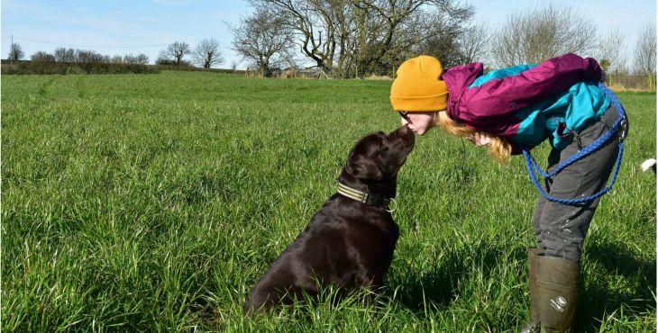 30fa4c72f Ako začať tréning so psom? Pravidlá sú základ! | Pes Bruno
