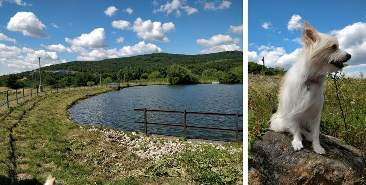 Tip na výlet so psom: Grinavské jazerá a ich tri vyhliadky