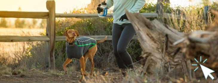 flísová bunda pre psa