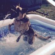 Letné kúpanie v bazéne.