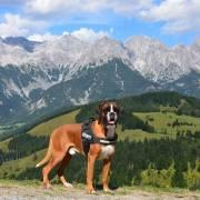 Baddy v Tirolsku