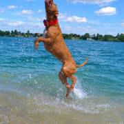 Jump vo vode