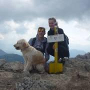 Pes v horach