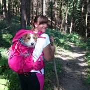 Pes v horách :)
