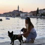 Bigi v Chorvátsku