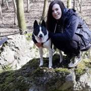Ajax, pes v horách