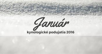 Január 2016