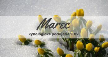 Marec 2017