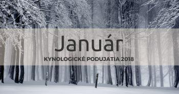 Január 2018