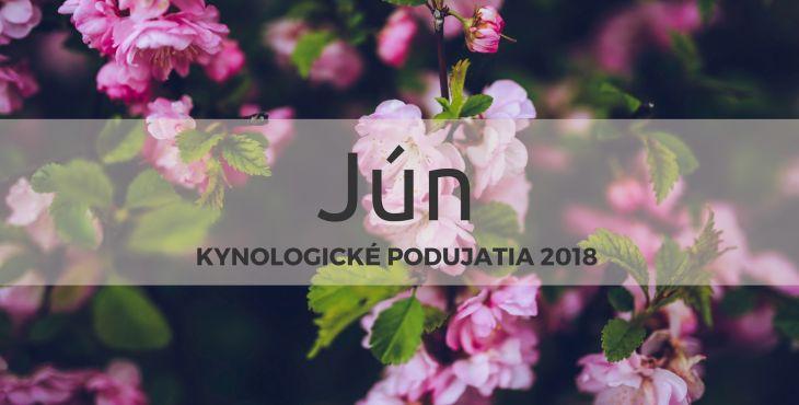 Jún 2018