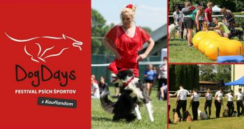 DogDays 2018 – festival psích športov s Kauflandom