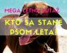 MEGA LETNÁ SÚŤAŽ - PES LETA 2016