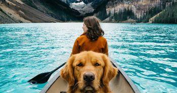 Kto je najlepší parťák na spoznávanie prírody? Jednoznačne pes!