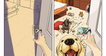 Život pred psom vs. život so psom